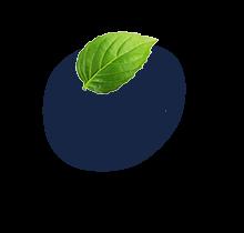 floating-leaf