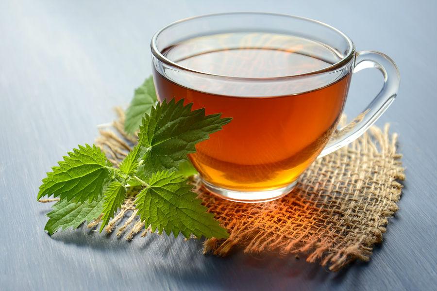 Žihľavový čaj - Erexan.sk